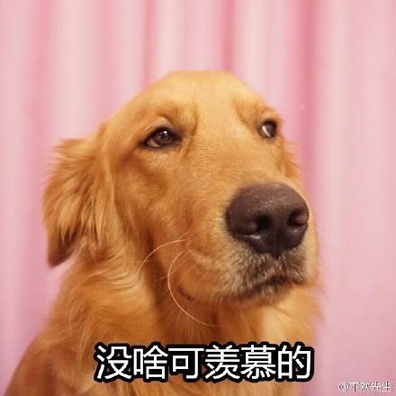 单身狗4.jpg