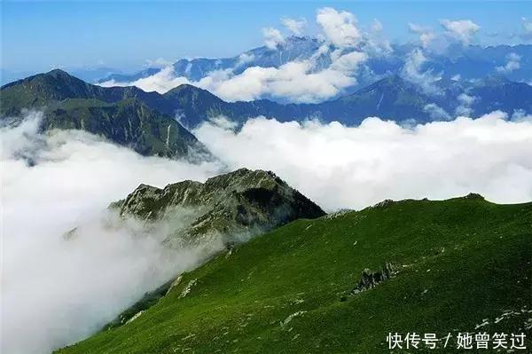 四川最适合赏鸟的景区,一生必去一次