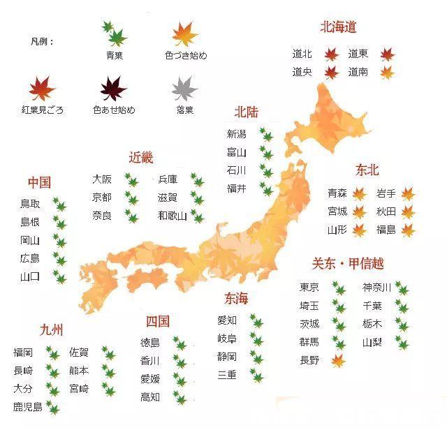 秋天日本旅游去哪玩?秋季日本赏红枫叶旅行攻略