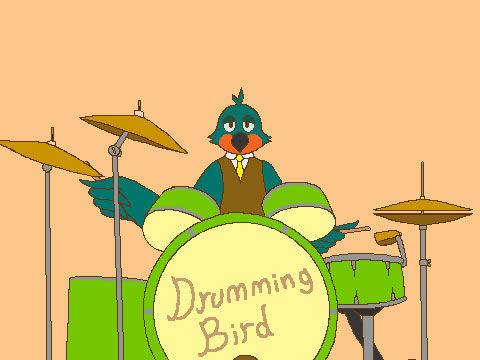 可爱小鸟打鼓