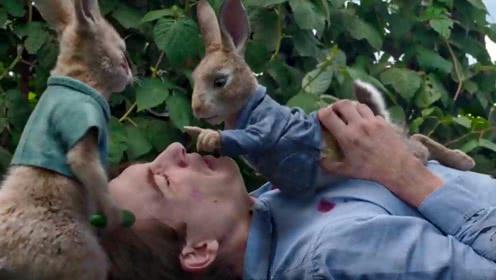 彼得兔:当现实中的兔子会说话之后,它的破坏力远超一个熊孩子