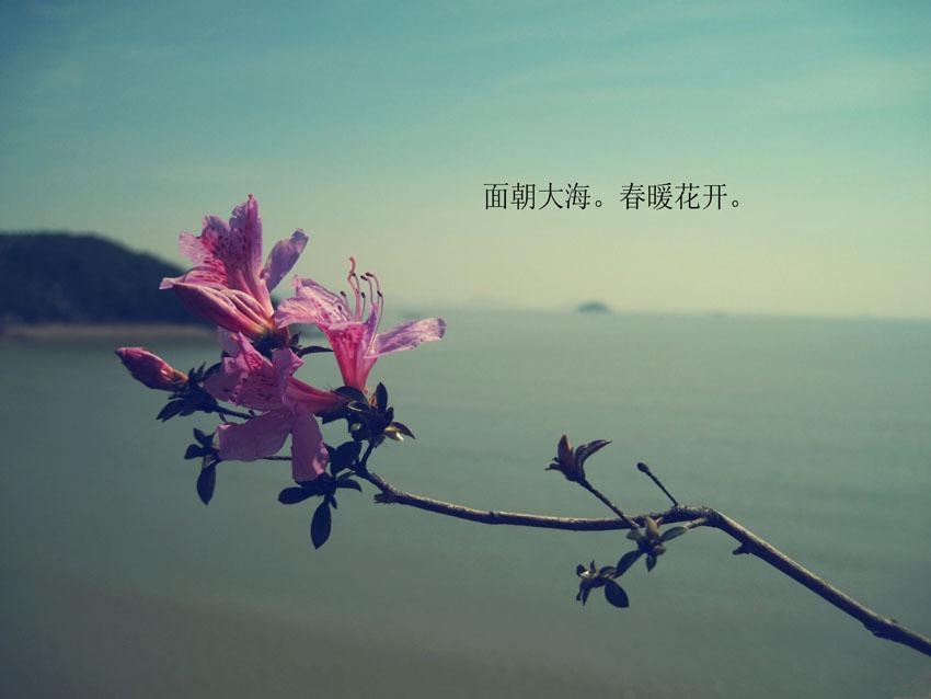面朝大海,春暖花开作者:海子