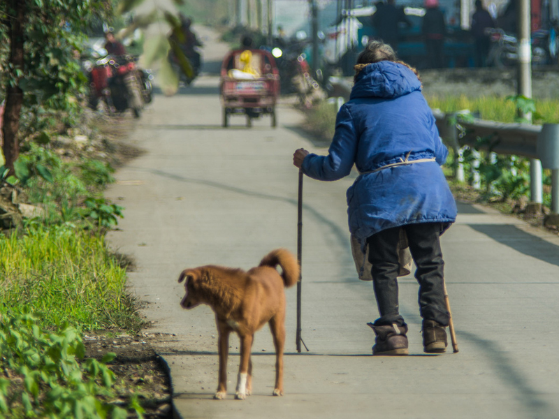 90多岁农村妇女的背影,看了让人心酸! - 周公乐 - xinhua8848 的博客