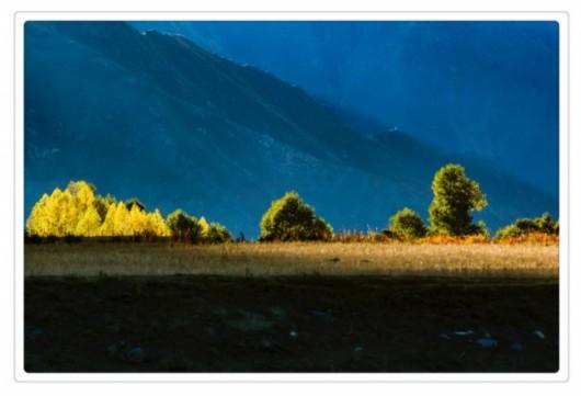 拍遍西藏网络影像节获奖作品展播 拉萨河谷的秋色 -  - 真光 的博客